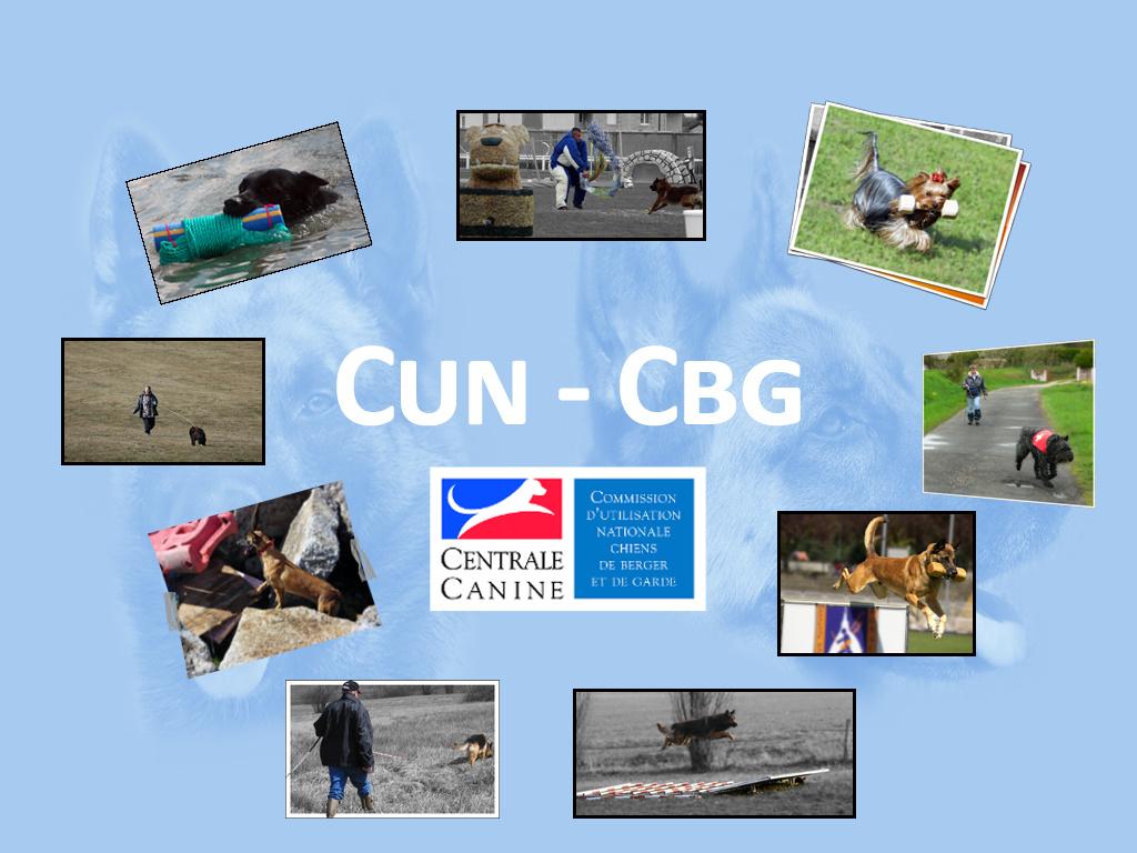 Commission d'Utilisation Nationale-Chiens de Berger et de Garde